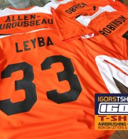 Iron on Numbers and Letters for Tigers Little League Baseball Uniforms